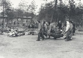 Le camp de concentration Bergen-Belsen,  photo: H. L. Clyn Hughes, public domain