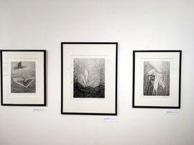 Exposition de l'association l'Empreinte, photo: Nicolas Petraz