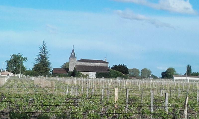 Paysage viticole à Saint-Emilion, photo: Magdalena Hrozínková