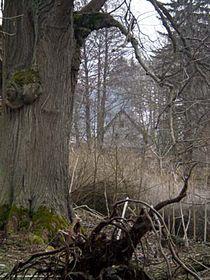 Výškovice, photo: Anne Lungová