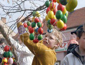 Easter egg tree, photo: CTK