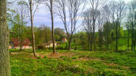 Lipová / Lindenhau (Foto: Václav Němec, Panoramio, CC BY-SA 3.0)