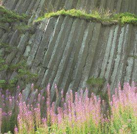 Панска скала, базальтовые столбики