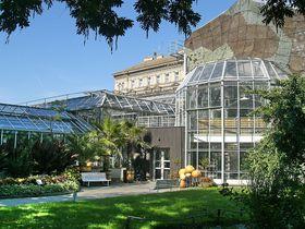 Ботанический сад Карлова университета в Альбертове, Фото: Chmee, CC BY-SA 3.0