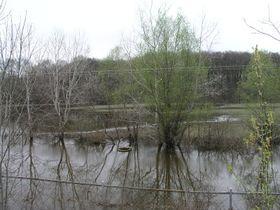 Park uzámku Lednice, foto: Jaroslav Smrž