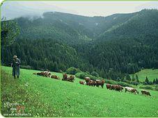 Slovaquie, photo: www.europe27.eu