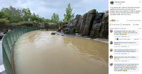 Фото: Facebook/Zoo Praha