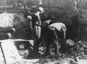 KZ-Häftlinge (Foto: Archiv von United States Holocaust Memorial Museum)