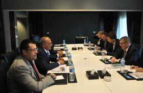 Переговоры главы чешского МИД Любомира Заоралека (справа) с представителями сирийской опозиции, Каир, Фото: ЧТК