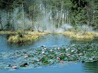 Le lac de Rusalka