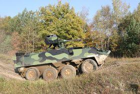 Pandur (Foto: Archiv des tschechischen Verteidigungsministeriums)
