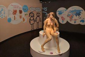 Выставка «Сексмиссия» (Фото: Архив центра iQLandia)