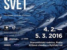 Плакат выставки «Подводный мир», Фото: официальный сайт выставки «Подводный мир»