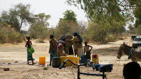 Burkina Faso, photo: TreesForTheFuture, CC BY 2.0