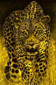 'Großer gelber Leopard' (2007)