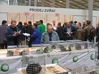 European Breeders' Fair, photo: www.cschdz.cz
