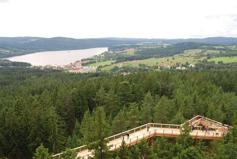 Le sentier des cimes près du lac de Lipno, dans la Šumava, photo: Richenza CC BY-SA 3.0