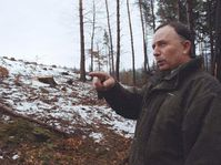 Illegal felling of trees, photo: CTK
