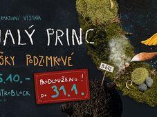 L'exposition de Eliška Podzimková, 'Le Petit Prince'