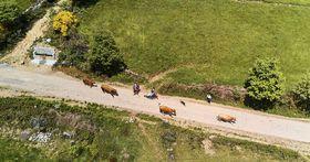 El camino desde arriba, foto: archivo personal de Tomáš Lenárd