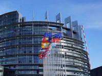 Parlement européen, photo: Site officiel de České volby