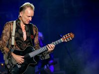 Sting, photo: Yancho Sabev, CC BY-SA 3.0