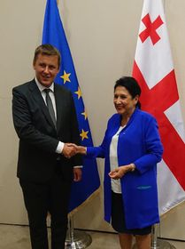 глава МИД Чехии Томаш Петршичек и президент Грузии Саломе Зурабишвили, фото: Архив MZV / Twitter