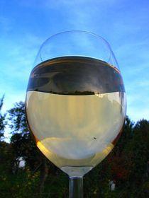 Nalijme si čistého vína, foto: archivo de Radio Praga
