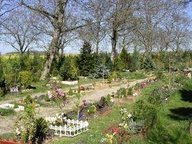 Кладбище для умерших домашних животных Драгань (Фото: PetPieta.cz)