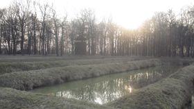 В двух шагах от этих прудов располагались крематории Освенцима-Биркенау (Фото: Ася Чеканова)