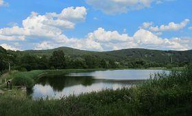 Jince, foto: Huhulenik, CC BY 3.0 Unported