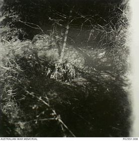 The hole used as a refuge by Lawrence Saywell, photo: Australian War Memorial, Public Domain