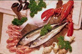 Mariscos de Galicia son de mejores...