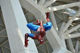 """Spider-Man oder """"Spinnen-Mann""""? (Foto: Alberto-g-rovi, CC BY-SA 3.0)"""