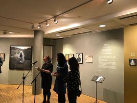 Susana Blas presentando la exposición 'Las Formas del Alma' en el Instituto Cervantes de Madrid, foto: Helena Blas