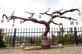 Photo: Site officiel du Jardin botanique de Prague