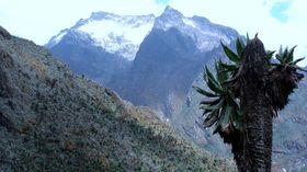 Rwenzori Mountains, Uganda, photo: Albert Backer, Wikimedia Commons, CC BY-SA 3.0