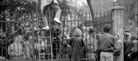 DDR-Flüchtlinge in Prag (Foto: Blanka Lamrová, Archiv der deutschen Botschaft in Prag)