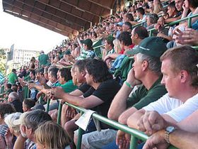 Bohemians fans, photo: Kristýna Maková