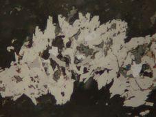 La foto microscṕica de příbramit, foto: Museo Minero de Příbram