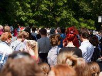 Foto: Petr Kratochvil, PublicDomainPictures.net