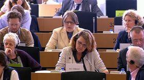Abgeordneten im Europaparlament (Foto: ČT24)