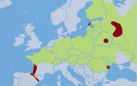 Poblaciones del visón europeo, fuente: ČT24