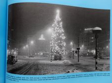 Repro 'Rudolf Těsnohlídek a vánoční strom republiky' / Moravské zemské muzeum, Brno