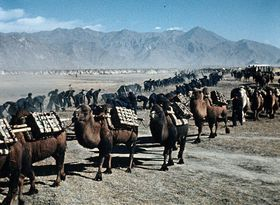 'La Route mène au Tibet', photo: © Dech hor / NFA