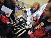 Photo: Facebook de Mezinárodní den archeologie