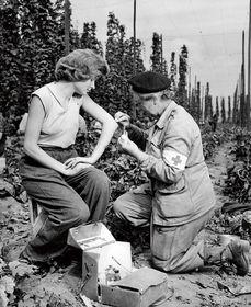 V 50. letech už byl Československý červený kříž státní organizací, foto: archiv ČČK