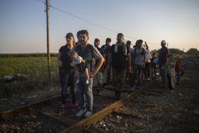 Сирийские беженцы (Фото: ЧТК)