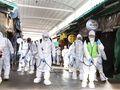 Ilustrační foto: ČTK/AP/Lee Jong-chul