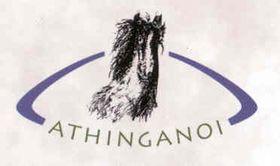 Логотип общества Атынганои